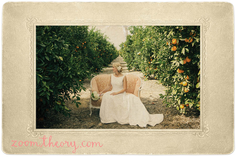 orange grove wedding