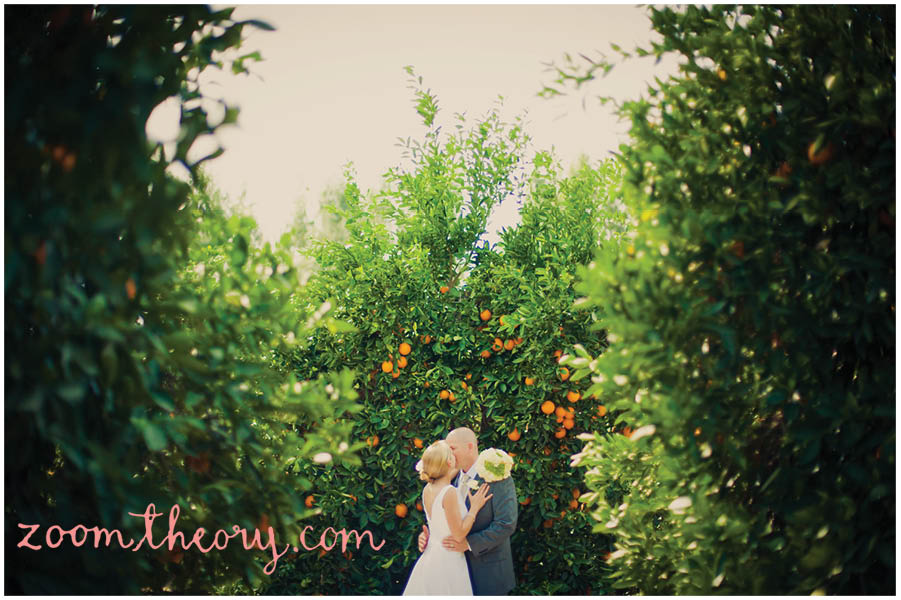 orange grove wedding 11