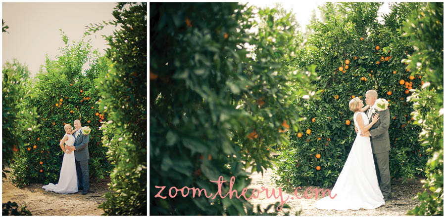 orange grove wedding 12