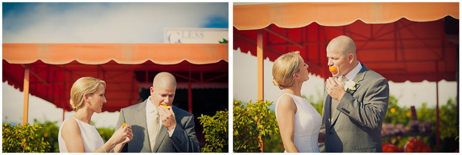 orange grove wedding 15