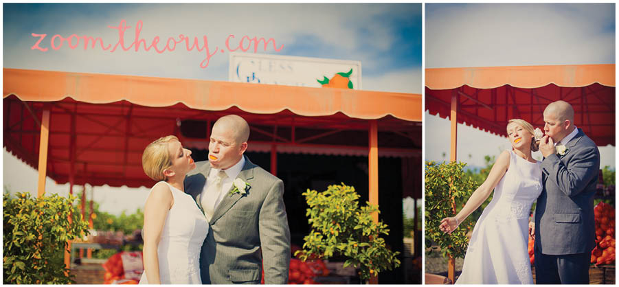 orange grove wedding 16