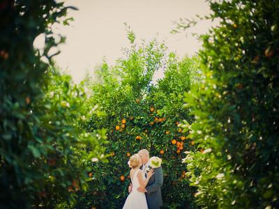 Orange Grove Wedding | Citrus State Historic Park