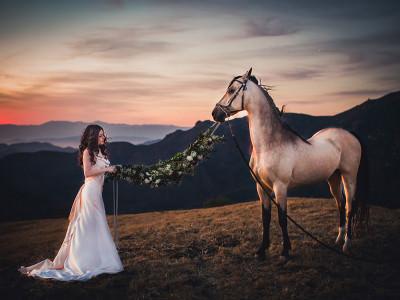 Blushing Bride Malibu