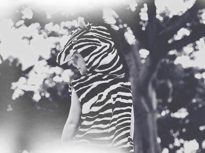 Little Zebra Halloween