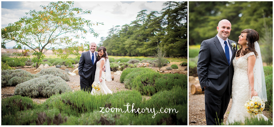 highland springs resort wedding lavender fields