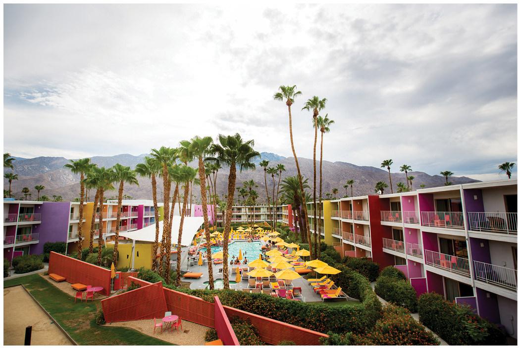 Saguaro Palm Springs Gay Wedding Zoom Theory15