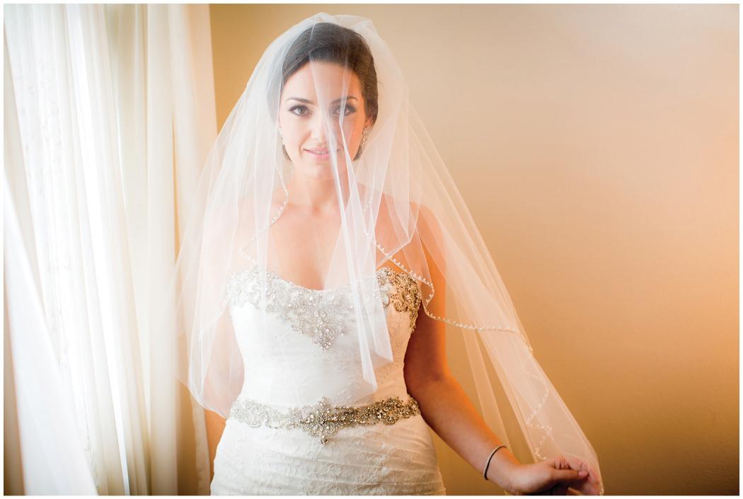 Redondo Beach Historic Library Wedding Zoom Theory 9